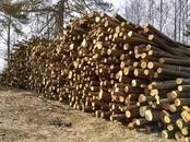 Оборудование, производство,  Производства Другое, цена 36 бел. руб., Фото